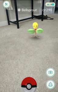 Screenshot - AR Enabled